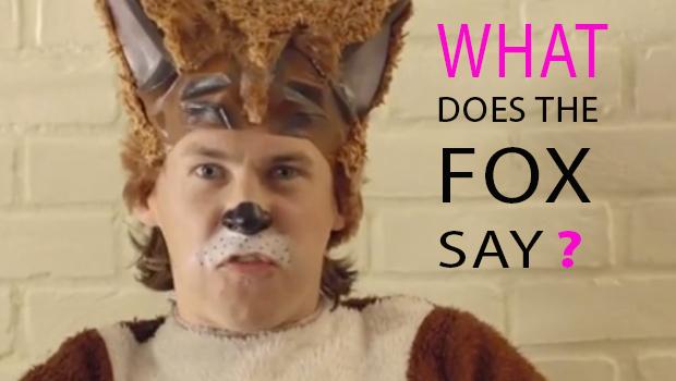 WHAT- fox