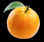 Orange1_2