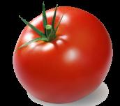tumblr_static_tomato