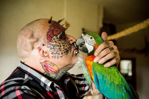 "Ted Richards, 56, from Hartcliffe in Bristol, who has had his ears taken off so he can look more like his Parrot. August 16 2015. See SWNS story SWPARROT; A man who had his face and eyeballs tattooed to look like his pet parrots has gone a step further - by cutting off his EARS. Bonkers Ted Richards, 56, is obsessed by pets Ellie, Teaka, Timneh, Jake and Bubi and has his face tattooed with colourful feathers. But the animal nut - who has 110 tattoos, 50 piercings and a split tongue - has now had both his ears removed by a surgeon in a six hour operation. Eccentric Ted has given his severed ears to a friend who ""will appreciate them"" and is now planning to find a surgeon prepared to turn his nose into a BEAK."