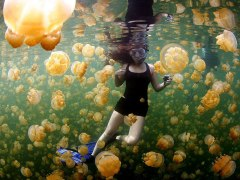 national-geographic-photo-of-the-day-internet-favorites-2015-37__880